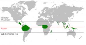 verteilung regenwald